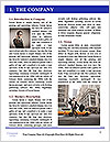 0000091588 Word Template - Page 3