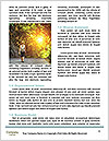 0000091590 Word Templates - Page 4