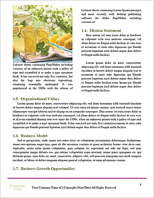 0000091593 Word Template - Page 4