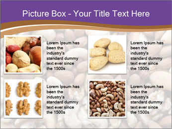 Nuts PowerPoint Template - Slide 14
