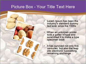 Nuts PowerPoint Template - Slide 17