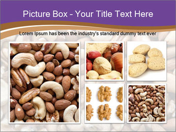 Nuts PowerPoint Template - Slide 19