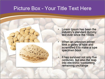 Nuts PowerPoint Template - Slide 20