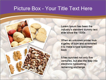 Nuts PowerPoint Template - Slide 23