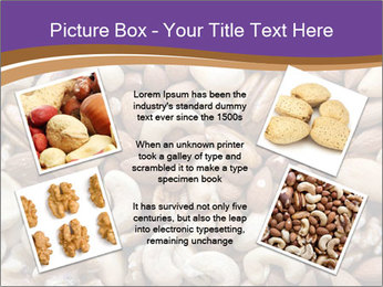 Nuts PowerPoint Template - Slide 24