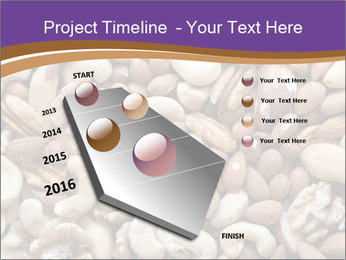 Nuts PowerPoint Template - Slide 26