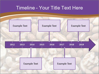 Nuts PowerPoint Template - Slide 28
