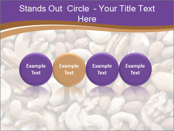 Nuts PowerPoint Template - Slide 76