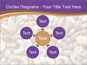 Nuts PowerPoint Template - Slide 78