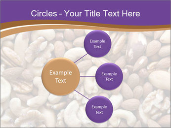 Nuts PowerPoint Template - Slide 79