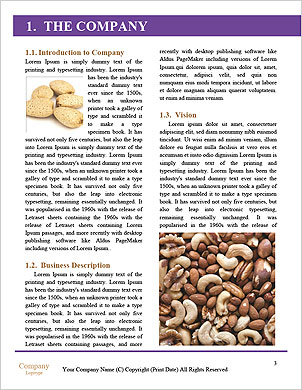 0000091594 Word Template - Page 3