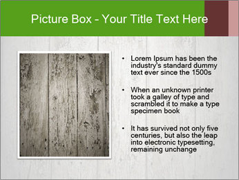 Wooden planks PowerPoint Template - Slide 13