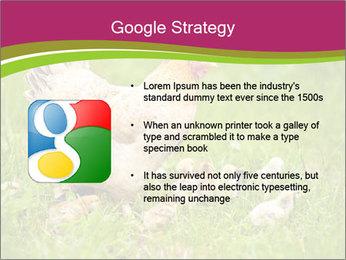 Mother chicken PowerPoint Template - Slide 10