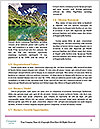 0000091605 Word Templates - Page 4