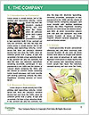 0000091607 Word Template - Page 3