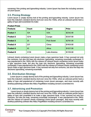 0000091610 Word Template - Page 9
