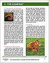 0000091612 Word Template - Page 3
