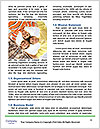 0000091614 Word Template - Page 4