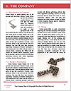 0000091615 Word Template - Page 3