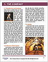 0000091622 Word Template - Page 3