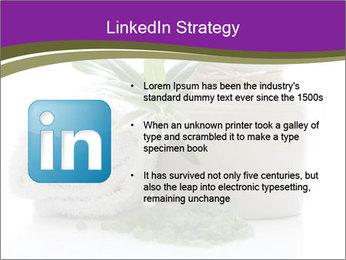 Spa PowerPoint Template - Slide 12