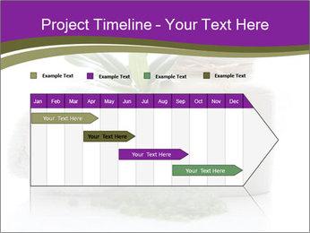Spa PowerPoint Template - Slide 25