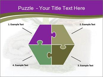 Spa PowerPoint Template - Slide 40