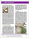 0000091624 Word Template - Page 3