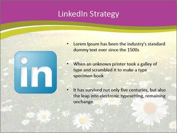 Flower field PowerPoint Template - Slide 12