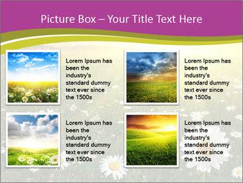 Flower field PowerPoint Template - Slide 14