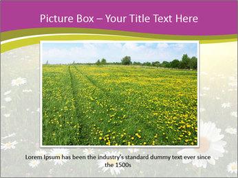 Flower field PowerPoint Template - Slide 15