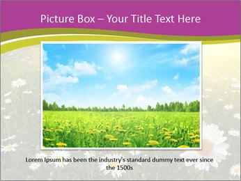 Flower field PowerPoint Template - Slide 16