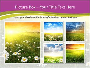 Flower field PowerPoint Template - Slide 19