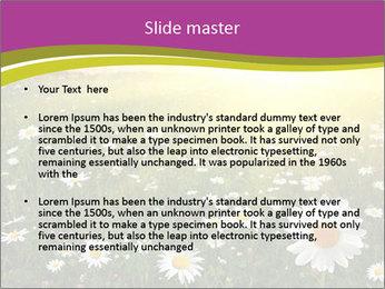 Flower field PowerPoint Template - Slide 2