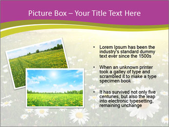 Flower field PowerPoint Template - Slide 20