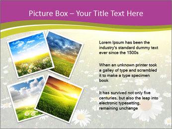 Flower field PowerPoint Template - Slide 23