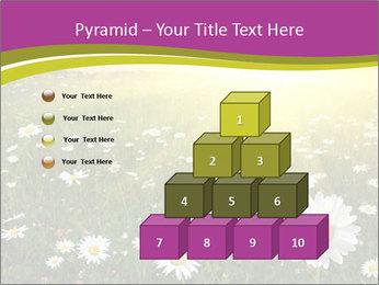 Flower field PowerPoint Template - Slide 31