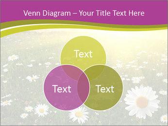 Flower field PowerPoint Template - Slide 33