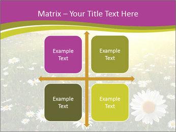 Flower field PowerPoint Template - Slide 37