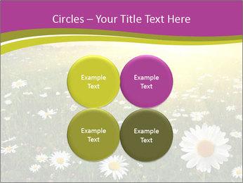 Flower field PowerPoint Template - Slide 38