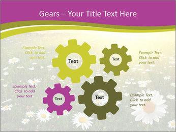 Flower field PowerPoint Template - Slide 47