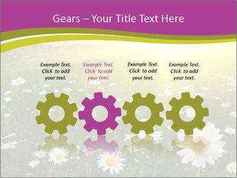 Flower field PowerPoint Template - Slide 48
