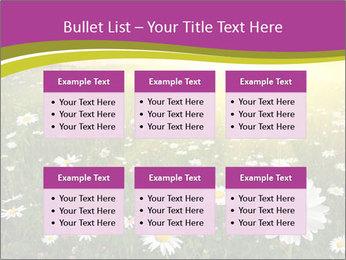 Flower field PowerPoint Template - Slide 56