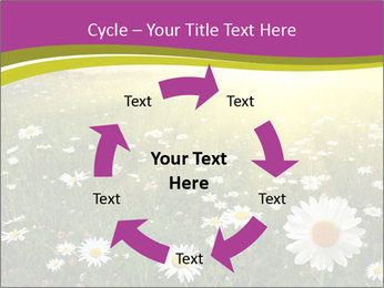 Flower field PowerPoint Template - Slide 62