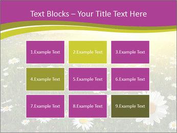 Flower field PowerPoint Template - Slide 68