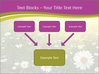 Flower field PowerPoint Template - Slide 70