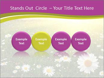 Flower field PowerPoint Template - Slide 76