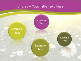 Flower field PowerPoint Template - Slide 77