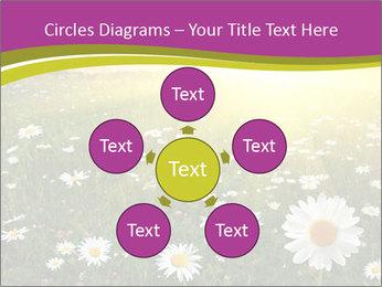 Flower field PowerPoint Template - Slide 78
