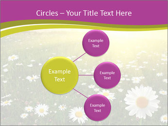 Flower field PowerPoint Template - Slide 79
